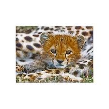Cheetah Cub 5'x7'Area Rug