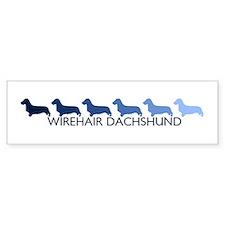 Wirehair Dachshund (blue colo Bumper Bumper Sticker