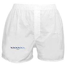 Vizsla (blue color spectrum) Boxer Shorts