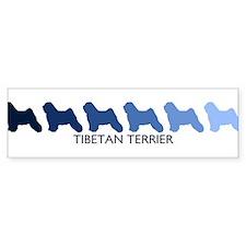 Tibetan Terrier (blue color s Bumper Bumper Sticker