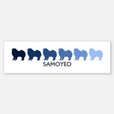 Samoyed (blue color spectrum) Bumper Bumper Bumper Sticker