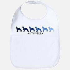 Rottweiler (blue color spectr Bib