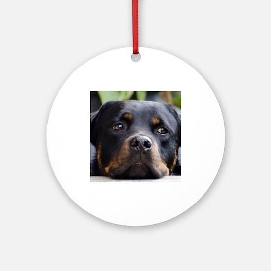 Rottweiler Dog Ornament (Round)
