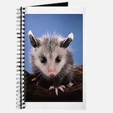 Cute Opossum Journal