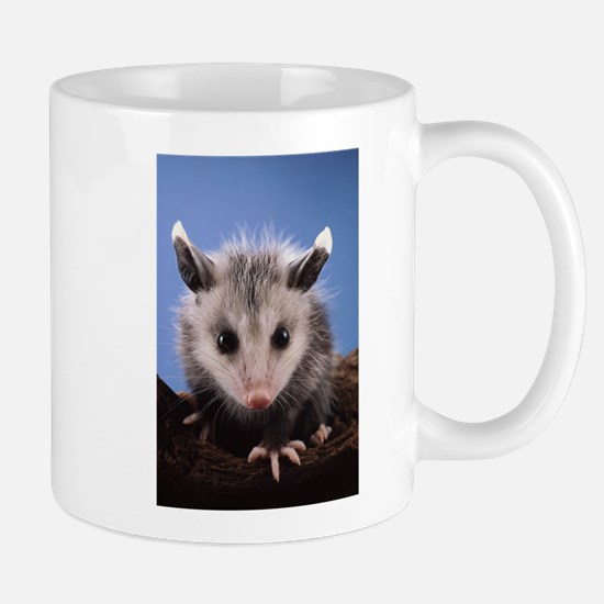 Cute Opossum Mugs