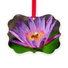 Cute Waterlily Picture Ornament