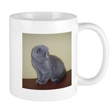 Blue Scottish Fold kitten Mugs