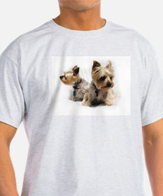 Silky Terriers T-Shirt