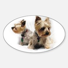 Silky Terriers Decal
