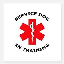 """SERVICE DOG IN TRAINING Square Car Magnet 3"""" x 3"""""""