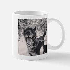Fozzie Mug Mugs