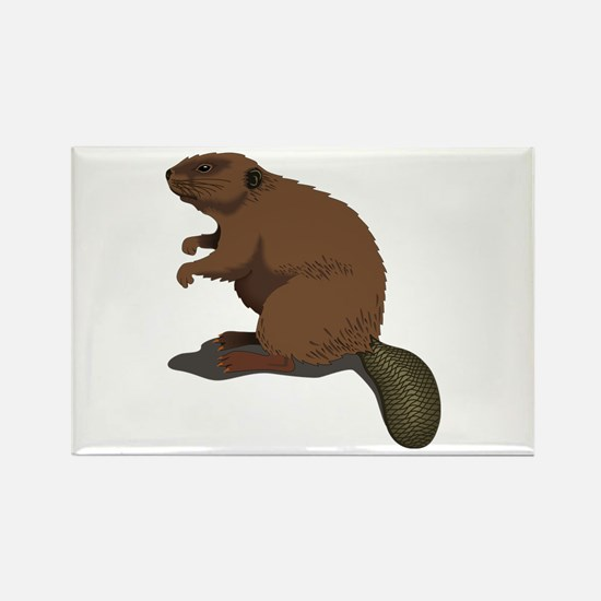 Cute Beaver Sitting Magnets