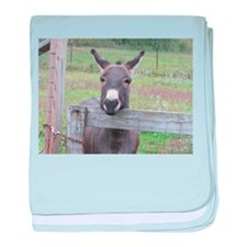 Funny Equine baby blanket