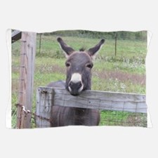 Cute Burro Pillow Case