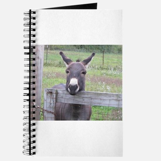 Cute Donkey Journal