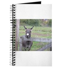 Miniature Donkey II Journal