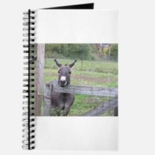 Miniature Donkey II Journal