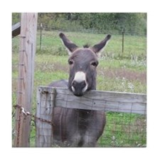 Miniature Donkey II Tile Coaster