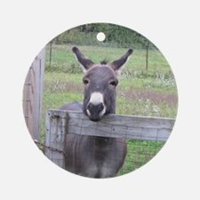 Miniature Donkey II Ornament (Round)