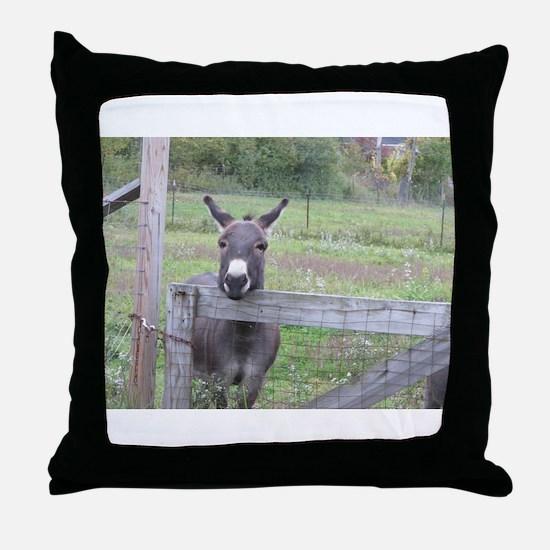 Miniature Donkey II Throw Pillow