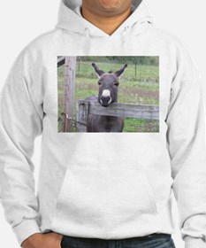Cosmo at the Gate Hoodie