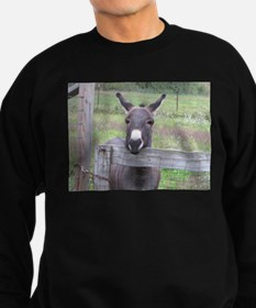 Cosmo at the Gate Sweatshirt