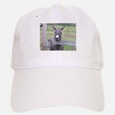 Cosmo at the Gate Baseball Baseball Cap