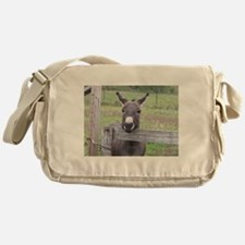 Cosmo at the Gate Messenger Bag