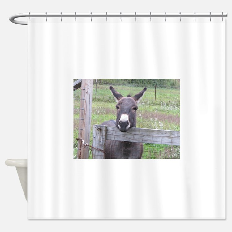 Cosmo at the Gate Shower Curtain