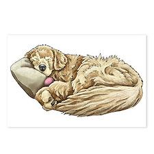 Golden Retriever Sleeping Postcards (Package of 8)