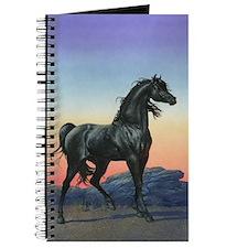 The Black Stallion Journal