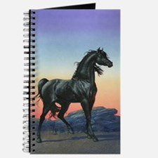 The Black Stallion Journal