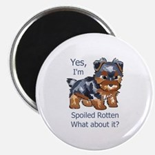 SPOILED ROTTEN YORKIE Magnets