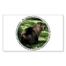 Capybara Circle Desgin Decal