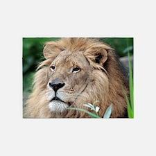 Lion010 5'x7'Area Rug
