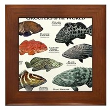 Groupers of the World Framed Tile