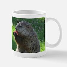 Groundhogs Mugs
