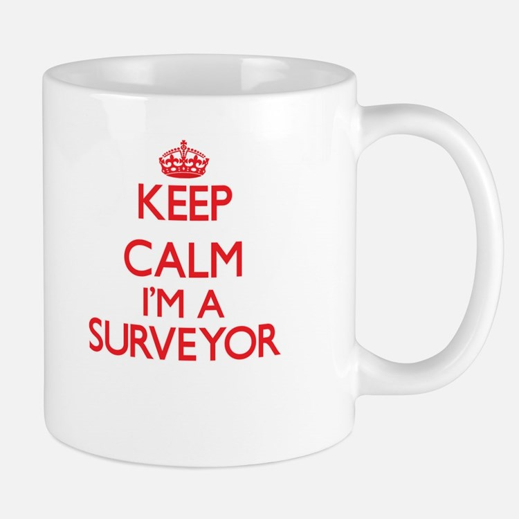 Keep calm I'm a Surveyor Mugs