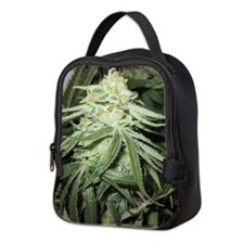 Marijuana Plant Neoprene Lunch Bag
