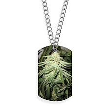 Marijuana Plant Dog Tags