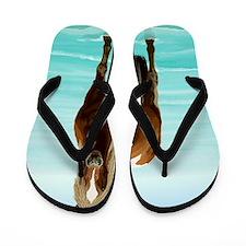 Chincoteague Paint Pony at Surf's Edge Flip Flops