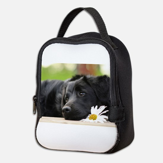 Black Lab Neoprene Lunch Bag