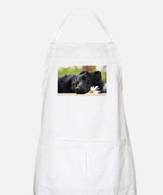 Black Lab Apron