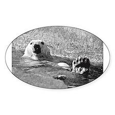 Polar bear swimming Decal