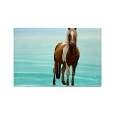 Chincoteague Paint Pony at Surf's Edge Magnets