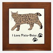 Pixie-Bob (color) Framed Tile