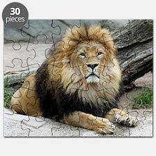 Cool Lion Puzzle