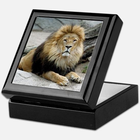 Lion_2014_1001 Keepsake Box