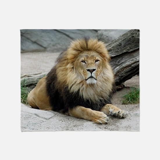 Lion_2014_1001 Throw Blanket