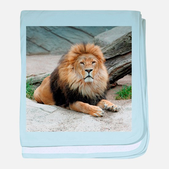 Lion_2014_1001 baby blanket